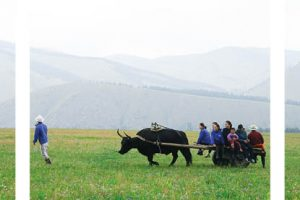 48 hours in Mongolia – your essential itinerary